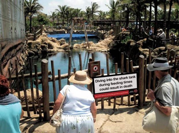 """Надпись на ограждении: """"Ныряние в бассейн с акулами во время кормления живтоных может закончиться вашей смертью"""""""