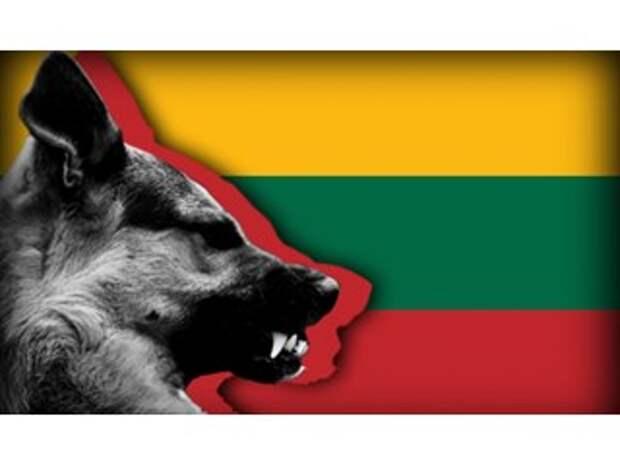 Литва решилась на невиданно резкий выпад против Москвы