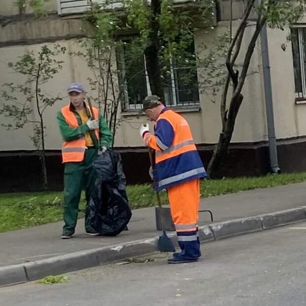 В парке «Березовая роща» убрали мусор
