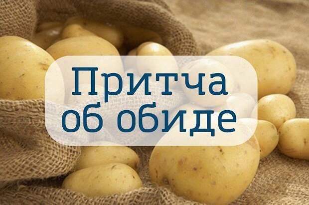 3925073_apviapvrar (600x398, 47Kb)