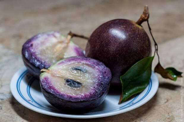 16. Хризофиллум (звездное яблоко) факты, фрукты, экзотика