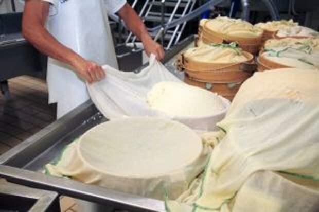 Когда б вы знали, из какого сыра... Могут ли у нас варить маасдам и гауду?