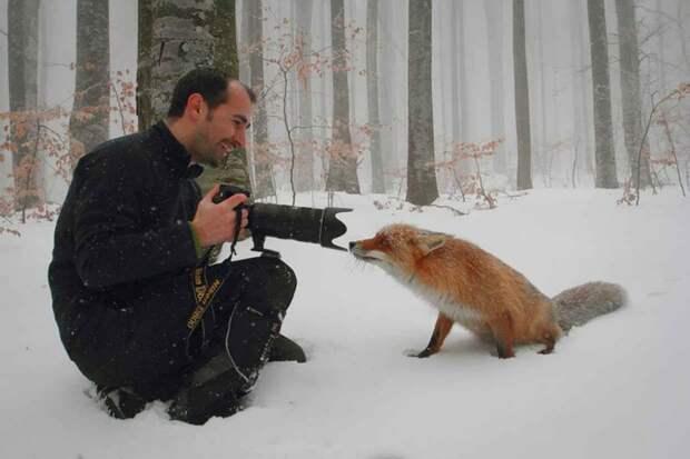 10 доказательств того, что фотограф-натуралист — лучшая в мире работа