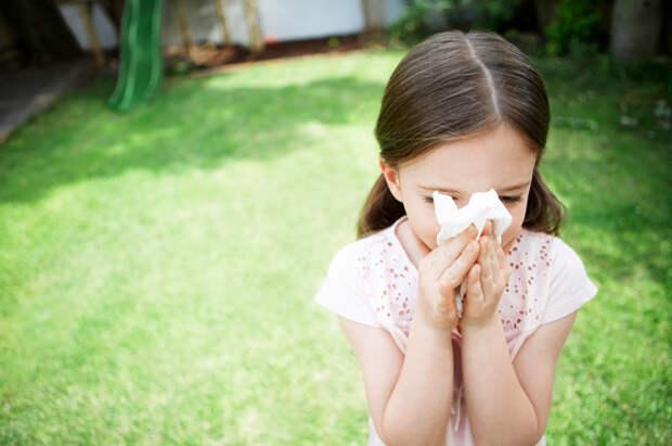 От чего чихаем? Причины возникновения аллергии