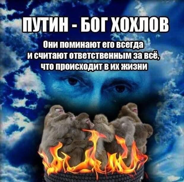 Александр Роджерс: Путин и укроп — молитесь за здравие, неблагодарные