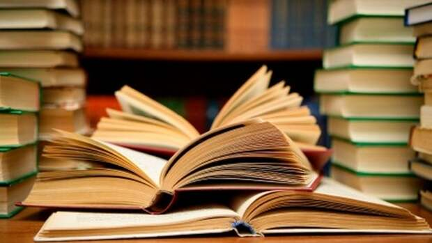 Самая читающая школьница России читает в день по три книги Донцовой