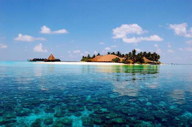 Мальдивские острова (4)