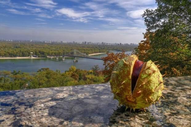 В начале недели в Украине ожидают солнечную погоду - Укргидрометцентр