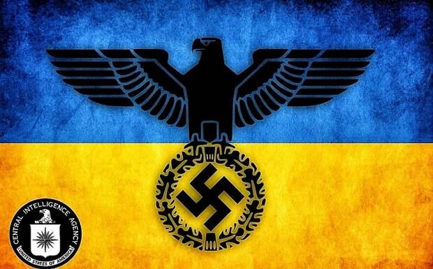 В Киеве готовятся издать Mein Kampf на украинском языке