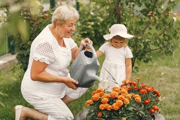СУПЕРГРЯДКА. Хотите придумать что-то такое, чтобы приобщить ребенка к труду? Предложите ему создать свой маленький огородик!