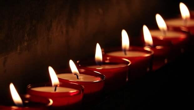 Культурные онлайн‑мероприятия готовят в Подмосковье ко Дню памяти и скорби