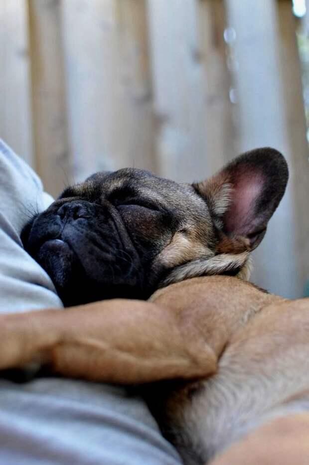 so cutee! sleepy: