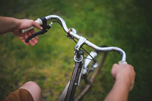 Жители Алтуфьева хотят видеть в районе велопрокат — опрос