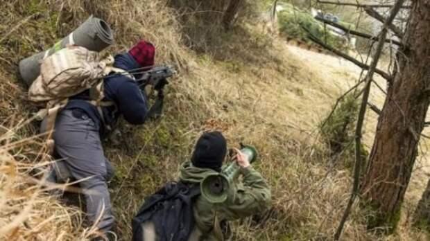 ВС США и Литвы готовятся к партизанской войне против России