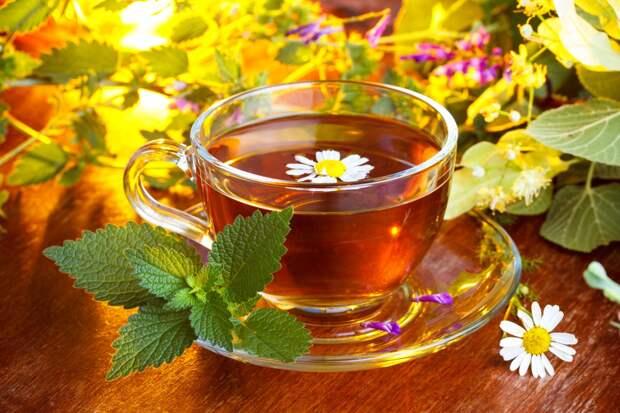 Многие любят травяной чай