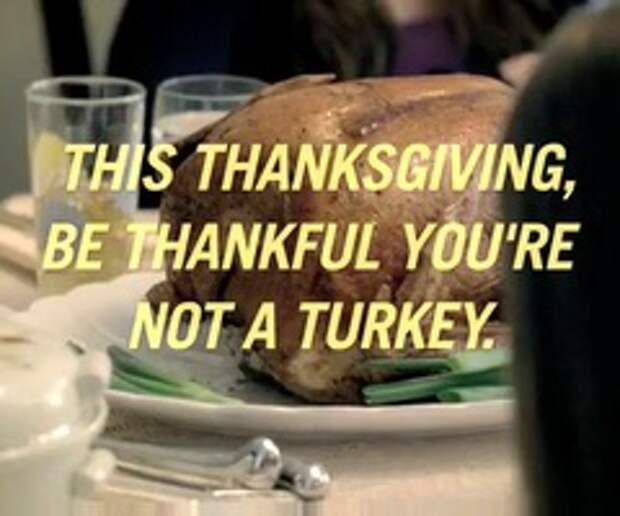 День благодарения, любимый и ужасный