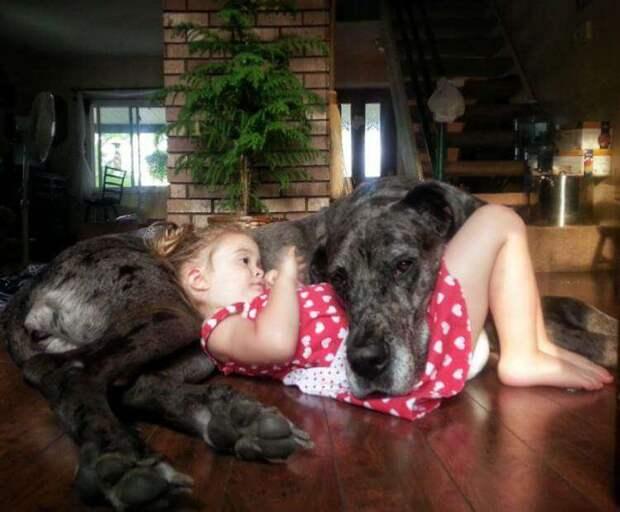 Каждому ребенку нужен такой друг