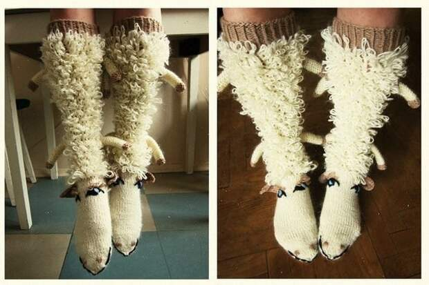 Овце носки