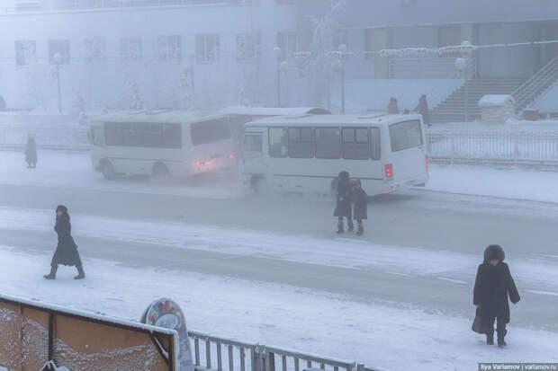 Как работает общественный транспорт в -50ºС?