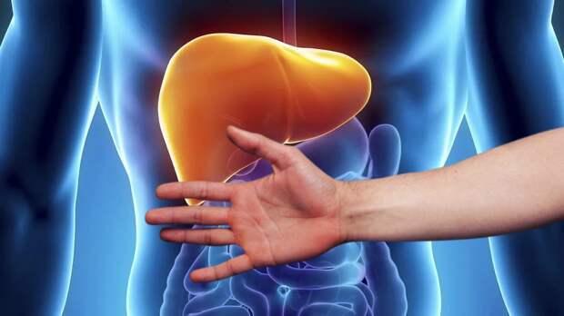 Признаком жировой болезни печени назвали необычное состояние ладоней