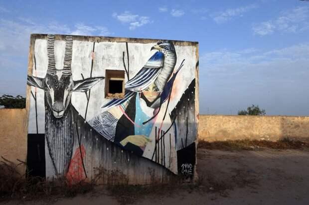 150 уличных художников из 30 стран, превратили старую деревушку Эр-Рияд в Тунисе в настоящую галерею под открытым небом (15)