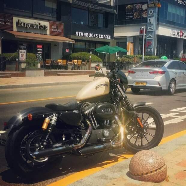 Крутые кастомы на основе Harley-Davidson Харли-Дэвидсон, кастом-байк, мотоциклы, харлей