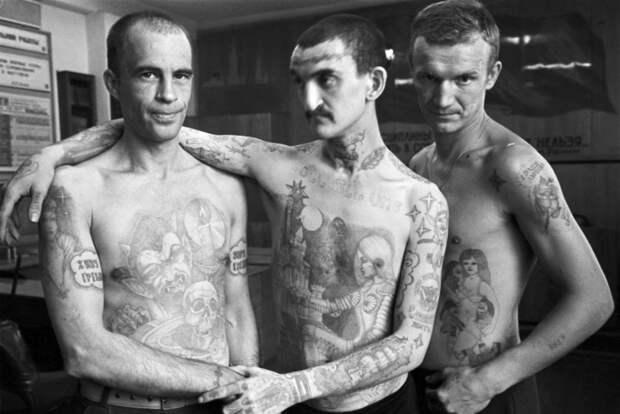 В Тверской области перед судом предстали четверо участников банды «Волков». ИНТЕРЕСНЫЕ УГОЛОВНЫЕ ДЕЛА.