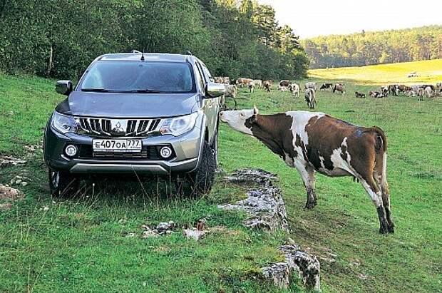 У обитателей сельской местности L200 явно вызывает интерес.