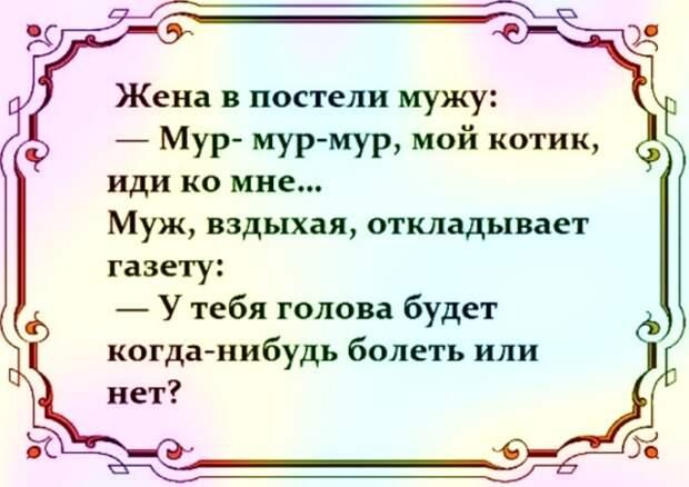 3416556_i_1_ (640x453, 391Kb)