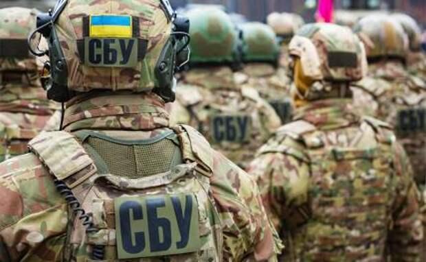 Семен Пегов: СБУ хотела выкрасть ополченца, чтобы доставить в Гаагу и очернить ДНР и Россию