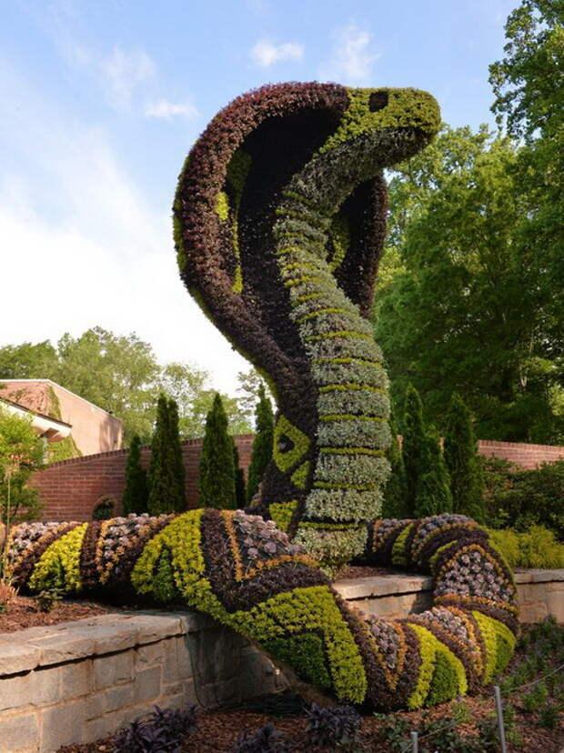 atlanta-botanical-garden-1.jpg