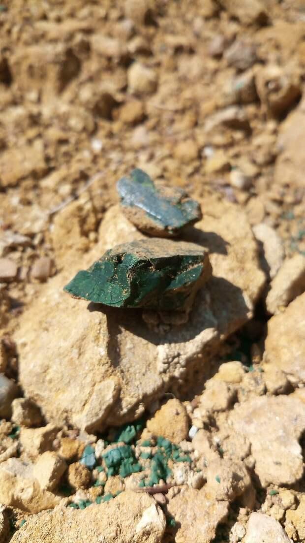 Во время раскопок в Шаркане нашли редкий минерал волконскоит