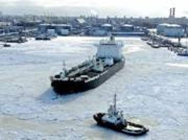 «Петербургский нефтяной терминал» снизил грузооборот