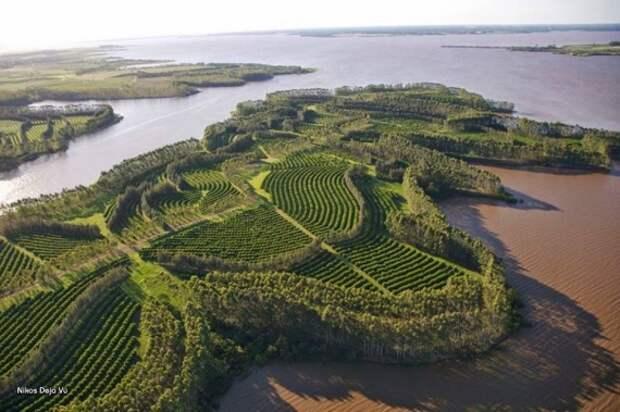углеродное сельское хозяйство: Органическое земледелие, пермакультура