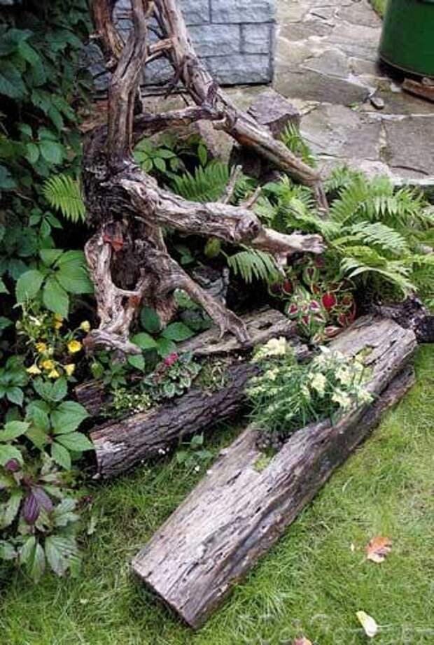Рутарий - интересные идеи оформления сада
