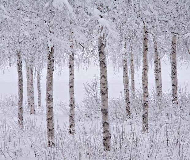 Итоги Международного конкурса фотографов пейзажа 2015