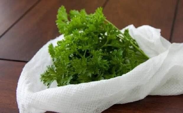 хранение зелени