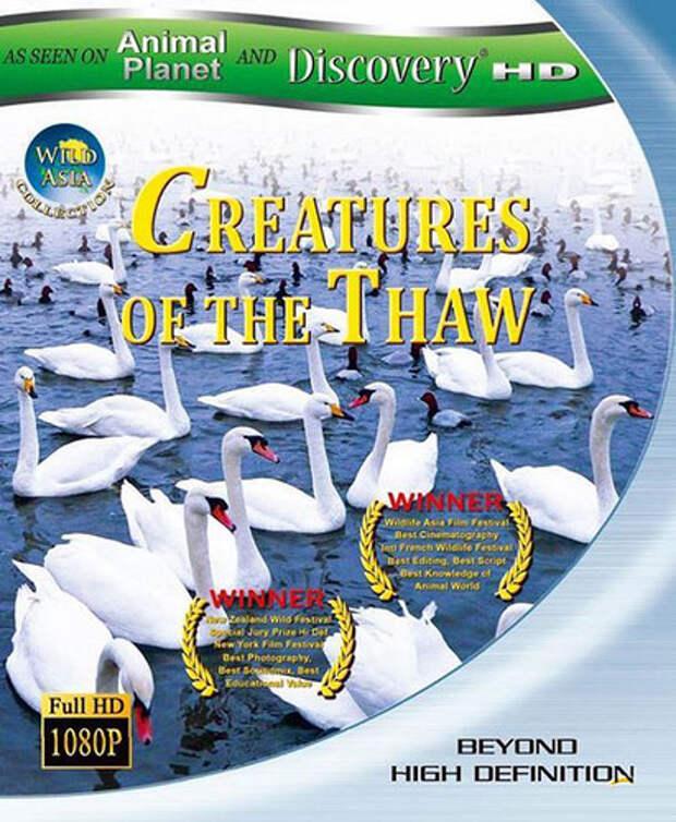 Дикая Азия. Существа оттепели / Wild Asia: Creatures of the Thaw (2010)