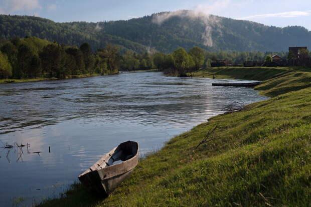 фото: https://smorodina.com
