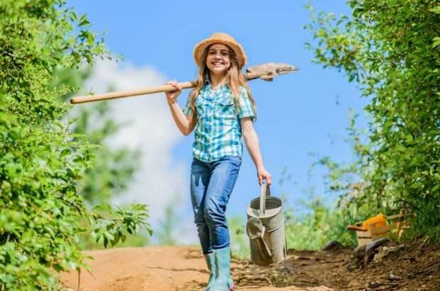 Не удобришь — не получишь. Какие подкормки нужны в саду и огороде