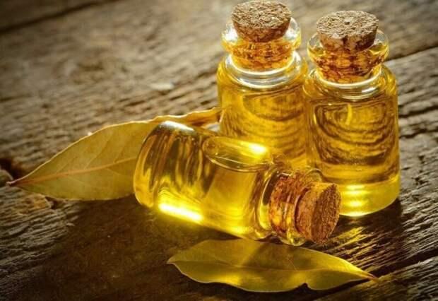 Вред масла из лаврового листа