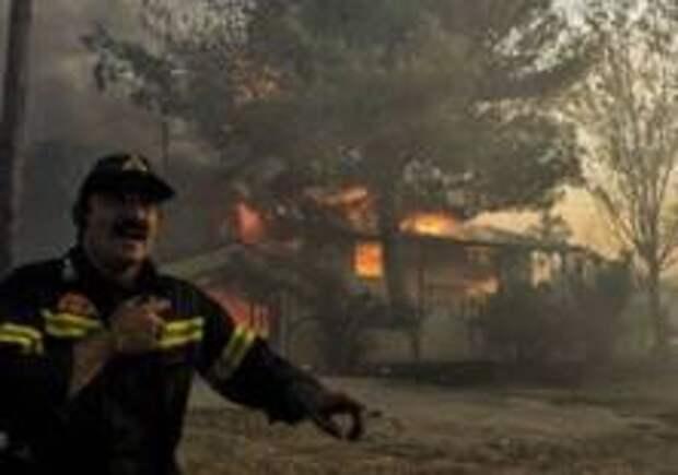 Лесные пожары убивают людей