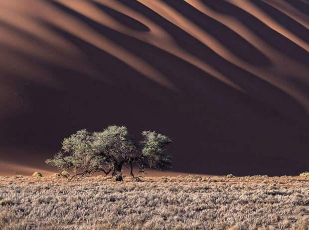Лучшие фотографии сентября 2015 от National Geographic