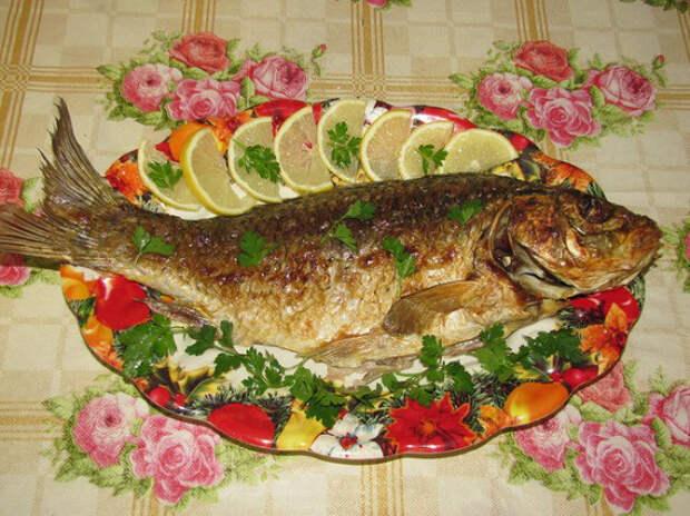 Сазан, запеченный в духовке: лучшие рецепты приготовления сочной и вкусной рыбы в фольге