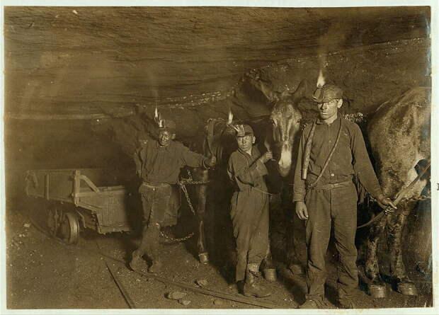 9. Мальчики-шахтёры и тяговые мулы в одной из угольных шахт Западной Виргинии. 1908 год. америка, дети, детский труд, история