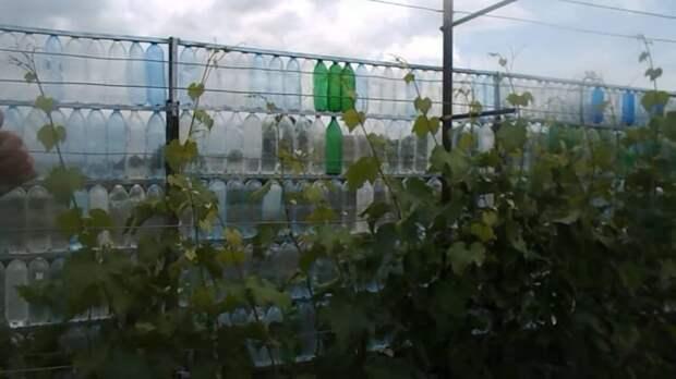 Бюджетнее не бывает. Забор на дачу из пластиковых бутылок: пошаговое изготовление