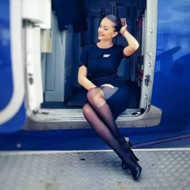 Ножки стюардесс. Подборка chert-poberi-styuardessy-chert-poberi-styuardessy-53370108022021-17 картинка chert-poberi-styuardessy-53370108022021-17