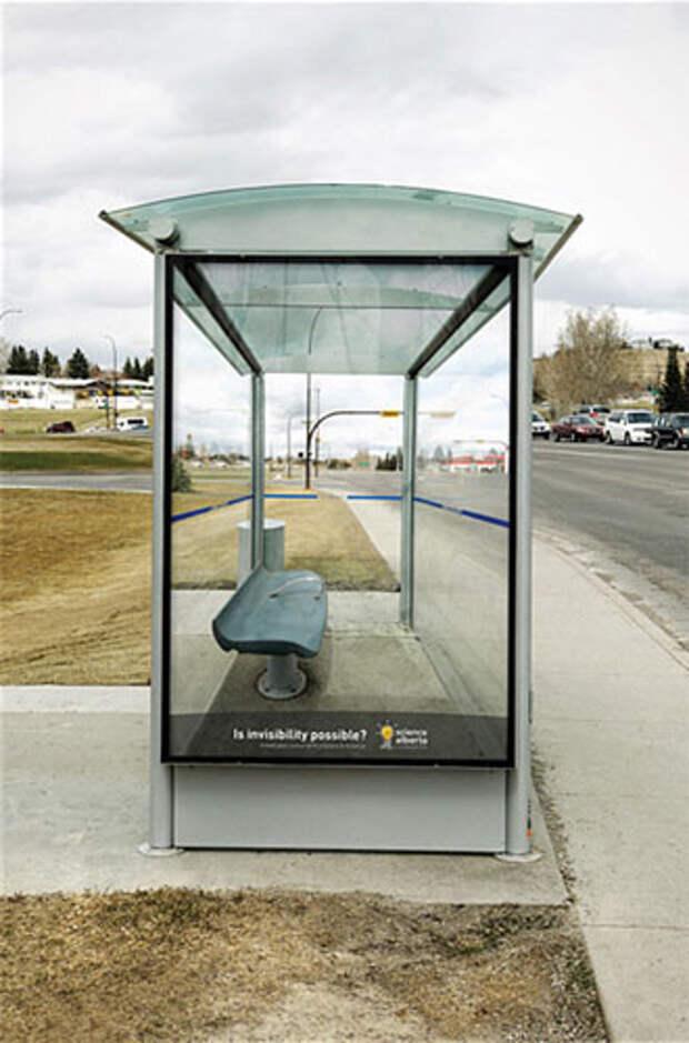 The Science Alberta Foundation: как изобразить невидимость