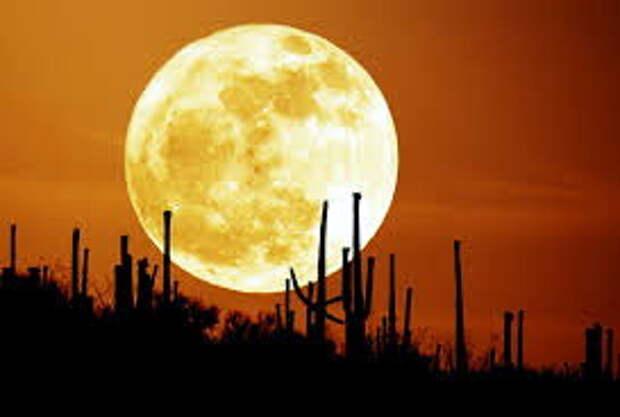 Битва за Луну