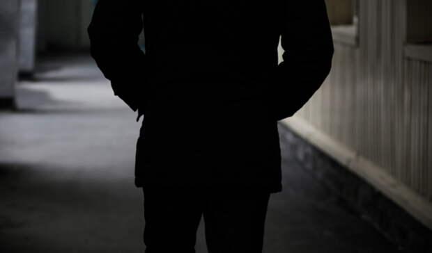 За 10 дней  Нового года в Оренбуржье зарегистрировали 428 преступлений